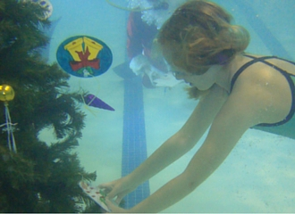 330x240 Thumbnail - Underwater Tree Decoration